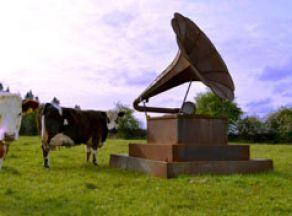 Donnacha Cahill | Gramophone