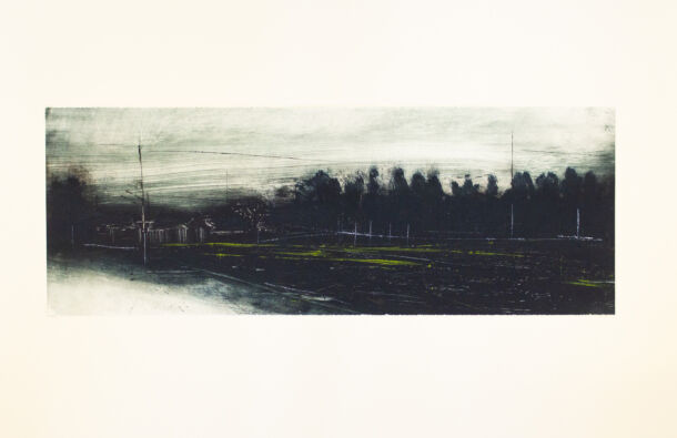 <p>Monoprint</p> <p>37 x 65 cm</p>  <p>Nominated by Black Church Print Studio</p>