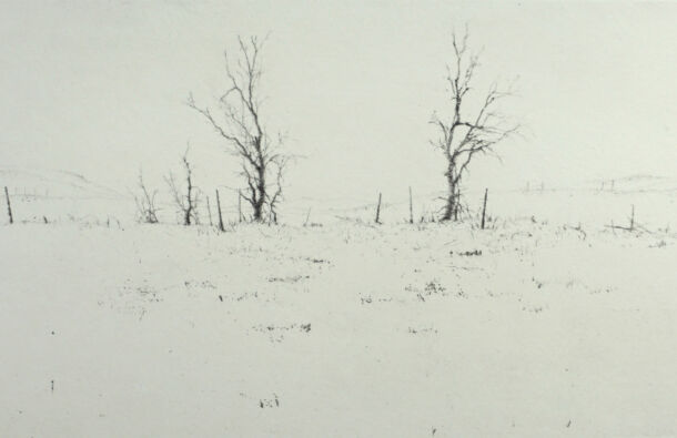 <p>Dry point</p> <p>13 x 24 cm</p>  <p>Nominated by The Ballinglen Museum & Arts Foundation</p>
