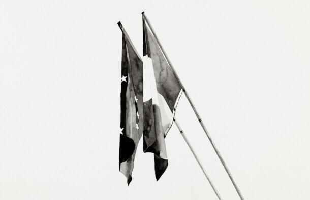 <p>Hanging Flags. Paris-1st arrondisement. Ink on paper. 43 x 30cm (2020) Photography Ros Kavanagh</p>